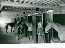 Georges Marchal and Dany Robin looking at the horses. 1963.