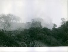 A view of forest while burning and smoke, 1961.