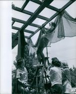 Man covering the roof frame with net.