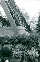 A man looking at plants while few men climbing over the bridge.