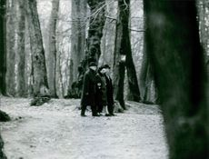 People walking in forest while communicating with each other.