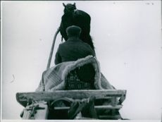 A Norwegian soldier riding in a horse cart in Namsos during the war, Norway, 1940.