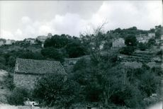 A view of houses in the village.