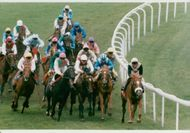 The field with the winner Quest For Fame at Ever Ready Derby on Epsom