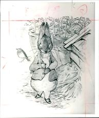 Peter Rabbit: the old.