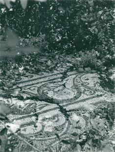 Göran Schildt photo depicting mosaic floors in the Olympos valley