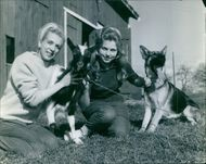 Women siting, holding dog and goat.
