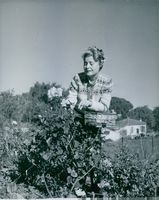 Lilian Harvey photographed getting flowers. 1960.