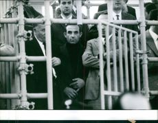 A group of mafia in the cage, 1967.