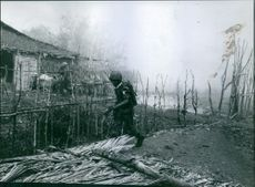 Soldiers holding gun and moving in the village during war.