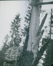 Woman standing and hidden behind the tree and looking. 1944.