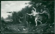 Sir Peter Paul Rubens: landscape of pan and syrinx.