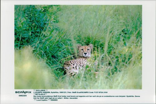 Picture taken by German tennis player Steffi Graf in South Africa