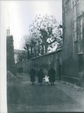 A child walking with her parents in an alley.