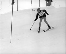 Son of a former American senator, Robert F. Kennedy, David Anthony Kennedy enjoying skiing.