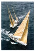 Over Three Hundred Yacht started in the race.