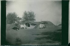 A view of huts in the forest during First World War, 1916.