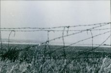 Photograph of a grass land which is taken from the opposite side the barbed wire fenced border line in Austria.