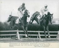 Moonlight, the winner of the spring hedge race, hurts before Fermite