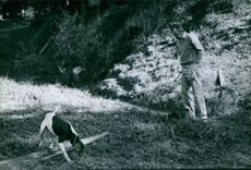 Man in a forest, looking at a dog and smiling.