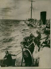Soldiers getting into the boat in sea. 1949.