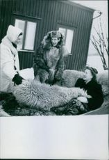 Man and women in the animal woolen costume.