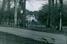 A hut in the village, surrounded by fence. 1969