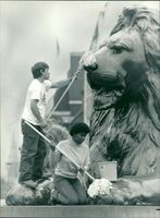 A Trafalgar Square lion getting a wash and brusg up.