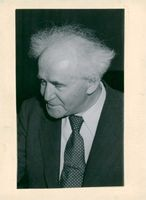 David Ben-Gurion, Jewish delegate to the UN