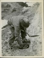 French fighting forces - a man covering a landmine with soil.