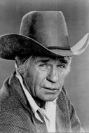 Portrait of American actor Jim Davis, known for his role as Jock Ewing in the Dallas television series.