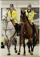 Female police patrol on horseback