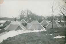 The camp at field operation