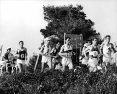 Marathon athletes during a competition.