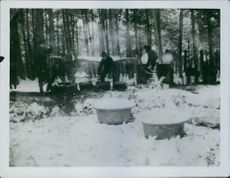Soldiers preparing food in forest.