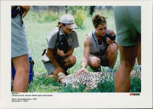 American tennis player Andre Agassi and his wife, actress Brooke Shields, on safari with friends John and Joni Pareni