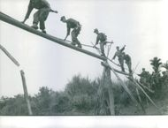 Solders crossing a river through a bridge made by a bamboo stem in Vietnam, 1962.
