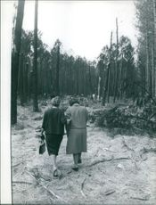 Two women walking in forest together.