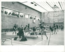 Sports: Table Tennis