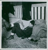 Soldiers lying on dried grass and reading book.
