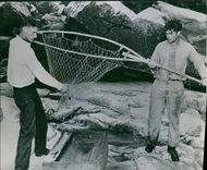 A fish trapped in net, men trying to bring it out.