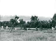 Dancing Brave and Shahrastani with jockeyn Walter Swinburn approaching the finish line