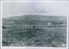 Soldiers exercising on field.