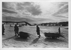 Two men pulling their cart filled with wood in Germany.  - 1942