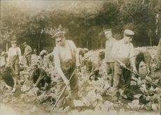 World War 1914-18 Disabled soldiers are planting during WWI. 1914