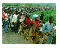 The Rwandan War:Rwandan refugees walkin line to receive their ration of rice.