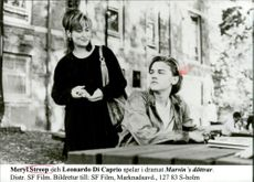 "Actors Meryl Streep and Leonardo Di Caprio in the movie ""Marvin's daughters"""