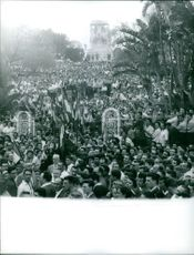 Large number of people gathered while some are holding flags in Algeria.