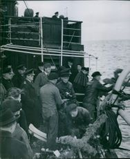 Soldiers standing in a ship and throwing something in sea during Sweden in World War I.