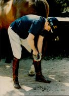 Ronald Reagan cleans a horse head